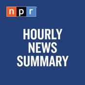 Hourly News Summary