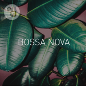 BOSSA NOVA - Bossa Nova Brazil