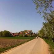 Radio Südpfalz