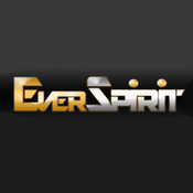 Everspirit