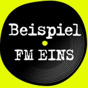 BeispielFM 1