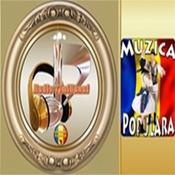 Radio TimiBanat-Populara