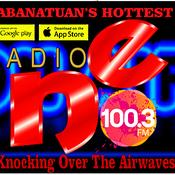 Radio NE FM 100.3 Munoz City