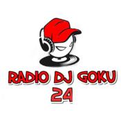 Radio Dj Goku 24