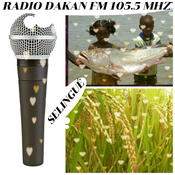 RADIO DAKAN FM SELINGUÉ